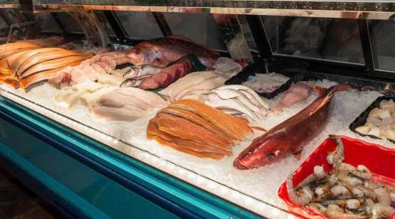 Harvest Moon Fish Mkt fish display case