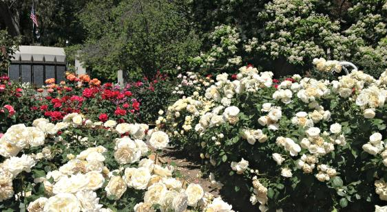 History | Visit Sacramento