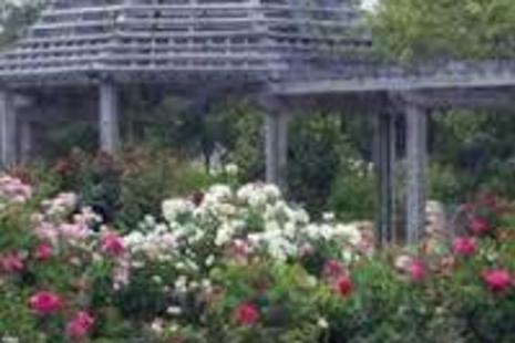 original Botanic Gardens on Independence Park - Baton Rouge Garden Center At Independence Botanical Gardens
