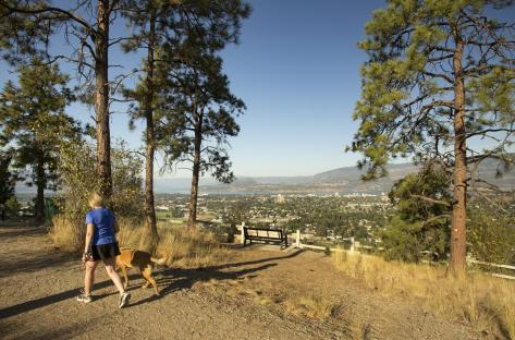Dilworth Mountain Park View 2