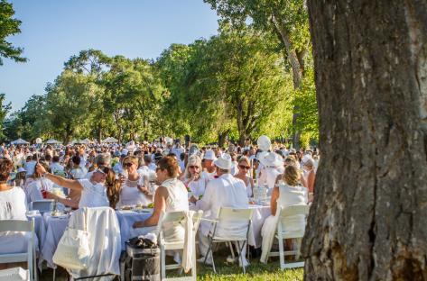 Diner en Blanc Image 2
