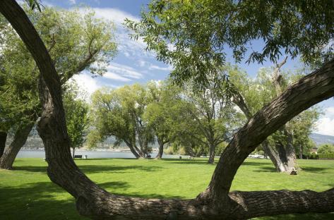 Kinsmen Park 2