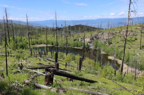 Myra-Bellevue Provincial Park 2
