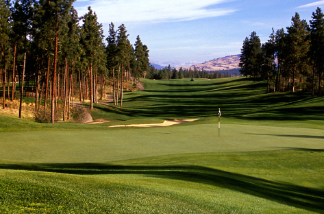 Okanagan Golf Club - The Bear Header 2