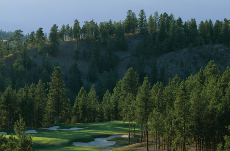 Okanagan Golf Club - The Quail Header 2