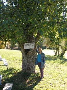 Janet enjoys her trip to Apple Hill.