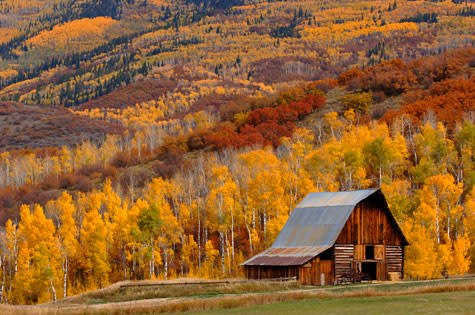 Fall barn steamboat springs