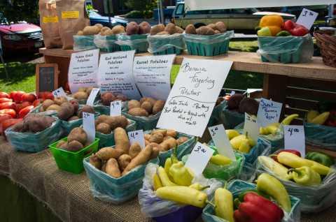 Cazenovia Farmers Market 3