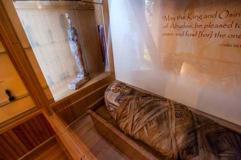 Cazenovia Library Mummy
