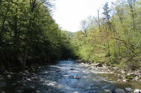 Chittenango Creek