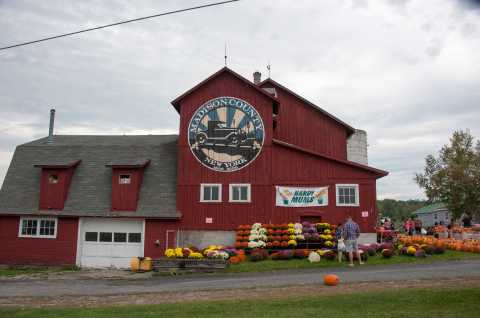 Fall Harvest Celebration at Critz Farms