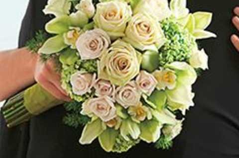 Oneida Floral