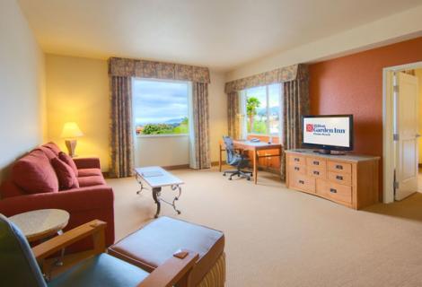 Hilton Garden Inn Room
