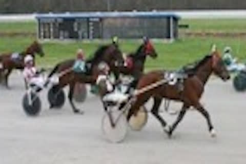 Live Harness Racing - Bluegrass Downs