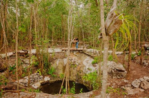 Mayan Cenote