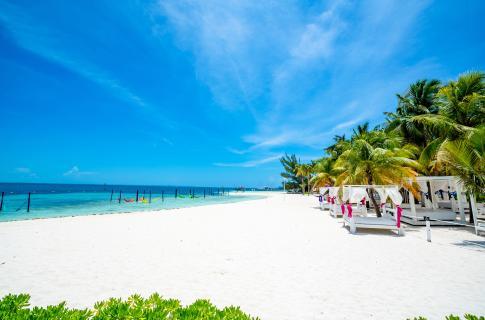Playa Grand Oasis Palm
