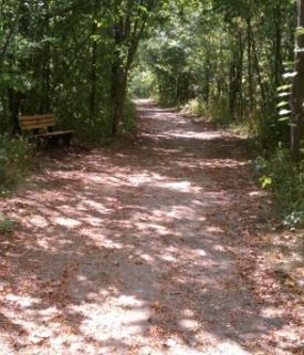 Beaver Ridge Trail