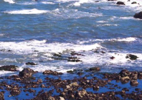 1585P3Patricks Point State Park beach.jpg