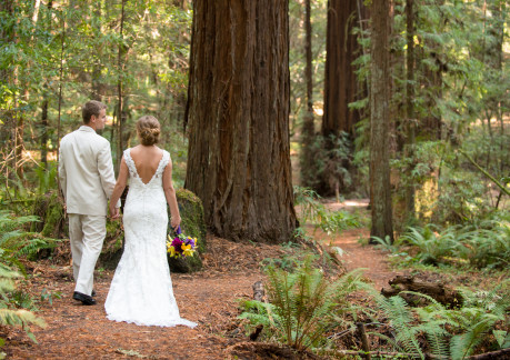 Weddings in Humboldt Redwoods State Park