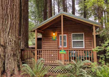 Emerald Forest Cabin