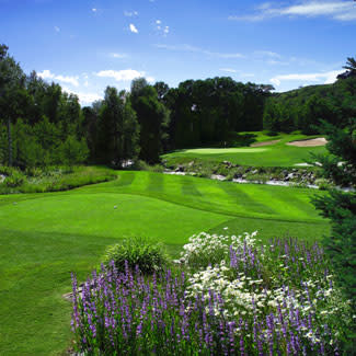 Golf Colorado