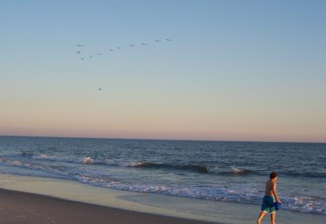 1366901327.8Uxk.beach-shots-nov-2008-104.jpg