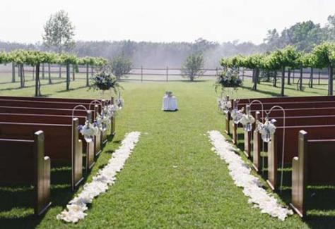 1420837982.ARjC.Vineyard-wedding-NCBI.jpg