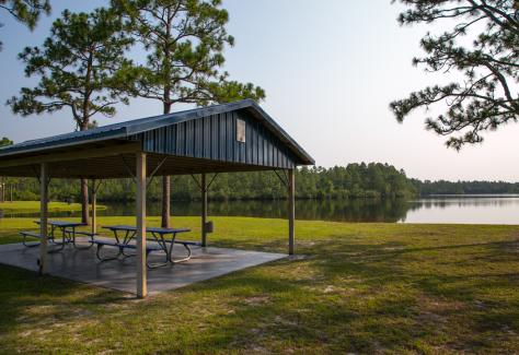 Spring Lake Park Canopy TDA
