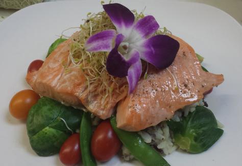 bella cucina salmon resized 7/28/2021