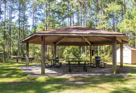 Brunswick Nature Park picnic shelter