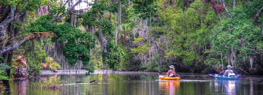 Two Kayakers sightsee along Spruce Creek