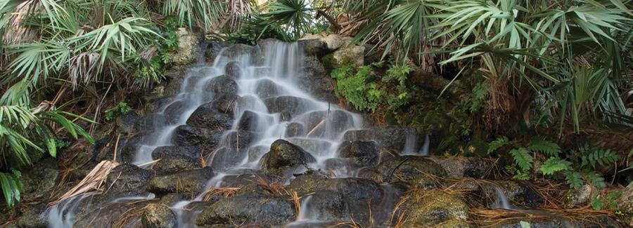 A waterfall at the Ormond Memorial Art Museum and Gardens