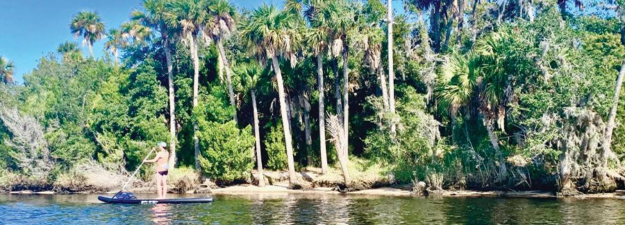 Paddleboarding along Tomoka State Park is a peaceful pursuit
