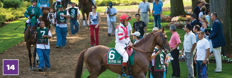 20 for 20 #14 Delaware Park - Jockey On Horse