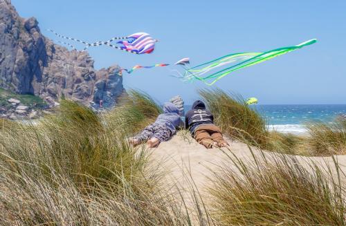 Dunes Kite Fest
