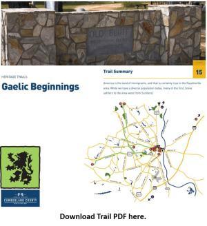 Gaelic Beginnings PDF Image