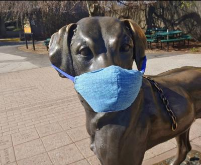 Popular dog statue at Roger Williams Park Zoo dons a face mask in support of current safety guidelines