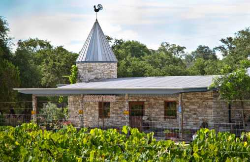 Dry Comal Creek Vineyards