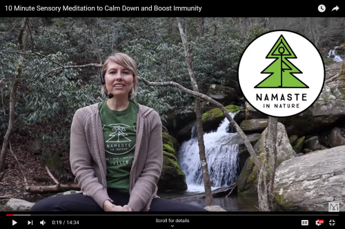 Screen shot of Namaste in Nature YouTube video series