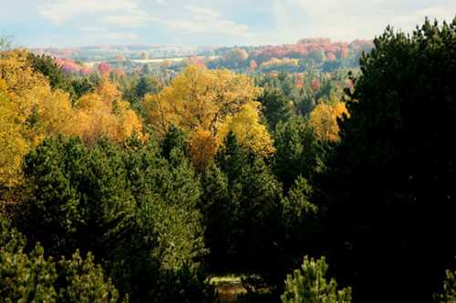 Hiking in Traverse City | Trails & Recreation Areas