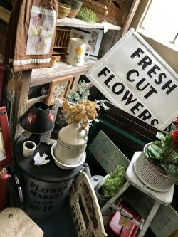 Outta the Shed, Antique store