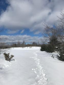 Kettles Trail - Snowshoes Needed