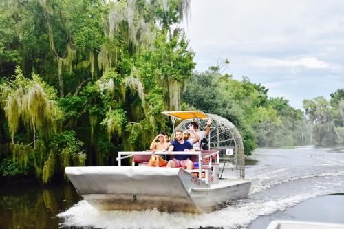 Take an Airboat Swamp Tour in Lafitte