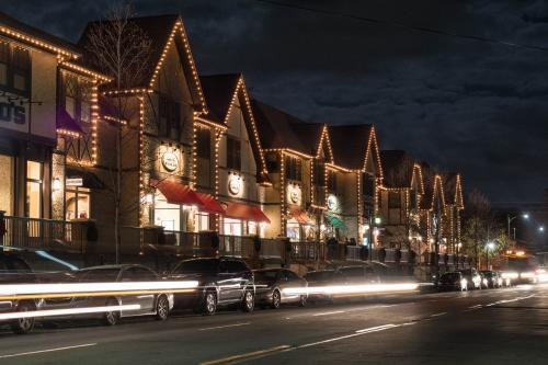 Biltmore Village Lights 2017