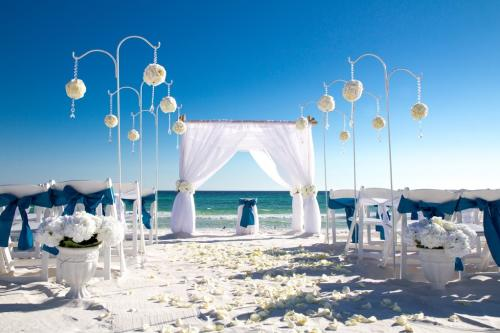 Attend a Wedding on the Beach-2199-32