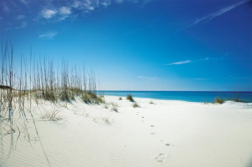 shell island gulf of mexico panama city beach florida