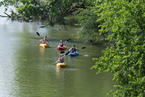 Kayaking on the Neuse River in Johnston County, NC