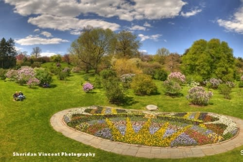 Highland Park in Rochester, NY by Sheridan Vincent Photography