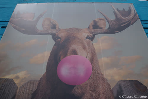Moose Bubblegum Bubble Mural in Chicago by Jacob Watts