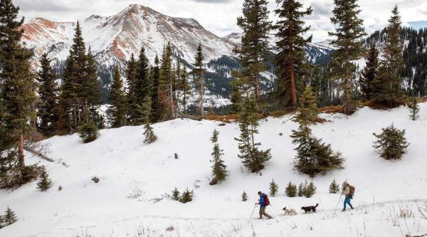 Western Slope Trekking : Your Guide to Cross Country Skiing / Snowshoeing